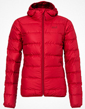 Jack Wolfskin HELIUM STARDUST Dunjacka indian red