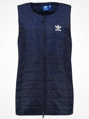 Västar - Adidas Originals BLUE GEOLOGY Väst nindig