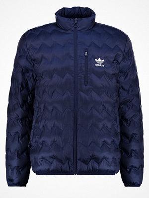 Adidas Originals SERRATED  Allvädersjacka legink