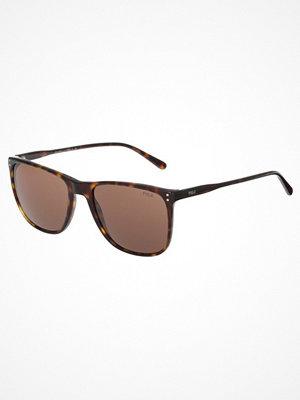 Polo Ralph Lauren Solglasögon mottled dark brown