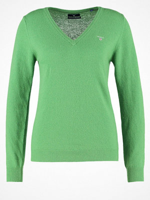Gant EXTRAFINE VNECK Stickad tröja birch green