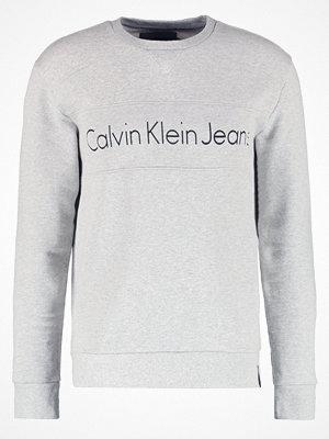 Calvin Klein Jeans HARVEL Sweatshirt grey