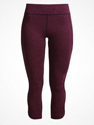 Free People INFINITY Tights wine