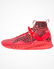 Sport & träningsskor - Puma IGNITE EVOKNIT Sneakers high risk red/black