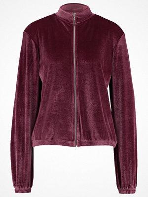 Street & luvtröjor - Even&Odd Sweatshirt dark purple