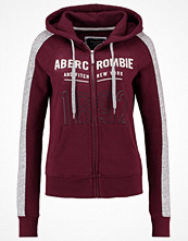 Street & luvtröjor - Abercrombie & Fitch CORE  Sweatshirt red