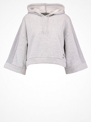 Puma XTREME Luvtröja light grey heather