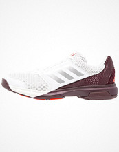 Sport & träningsskor - Adidas Performance MULTIDO ESSENCE  Indoorskor white/energy/silver metallic