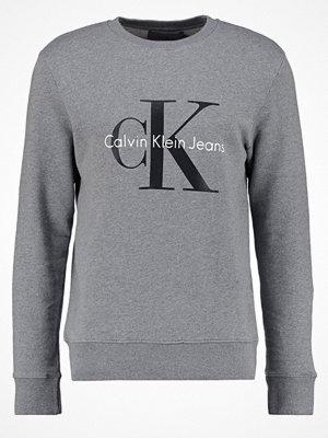 Calvin Klein Jeans CREW NECK Sweatshirt mid grey heather