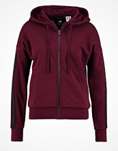 Adidas Performance Sweatshirt maroon/black