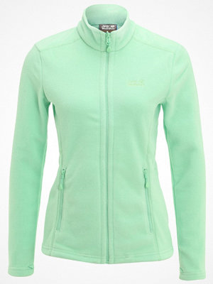 Jack Wolfskin MOONRISE  Fleecejacka spring green