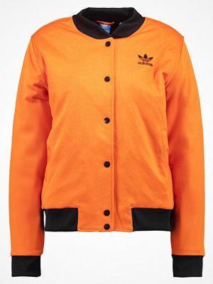 Adidas Originals BRKLYN HEIGHTS Bomberjacka tacora