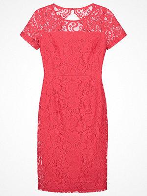 Dorothy Perkins Fodralklänning coral