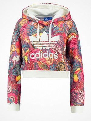 Street & luvtröjor - Adidas Originals Luvtröja multicolor