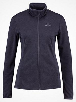 Eider SWING  Sweatshirt dark grey