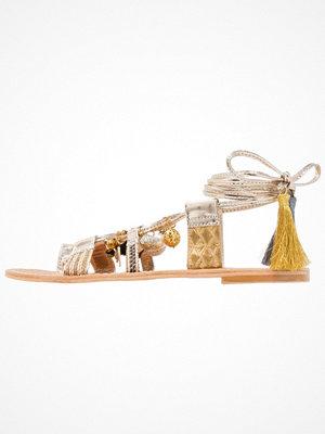 Sandaler & sandaletter - Steve Madden RAMBEL Flipflops gold