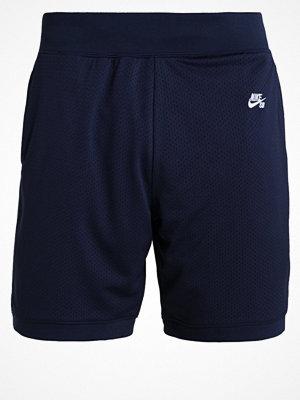 Nike Sb Shorts obsidian/white
