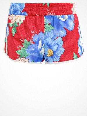 Adidas Originals Shorts multicolor
