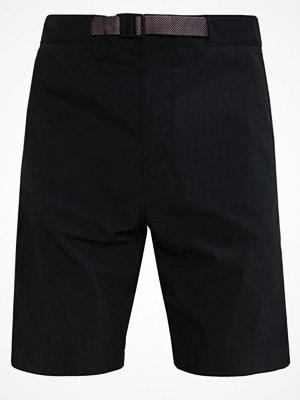 Shorts & kortbyxor - Nike Sb Shorts black