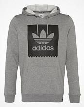 Tröjor & cardigans - Adidas Originals BLACKBIRD BASIC  Luvtröja core heather/black