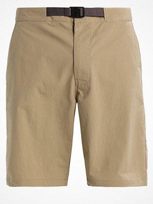 Nike Sb Shorts khaki