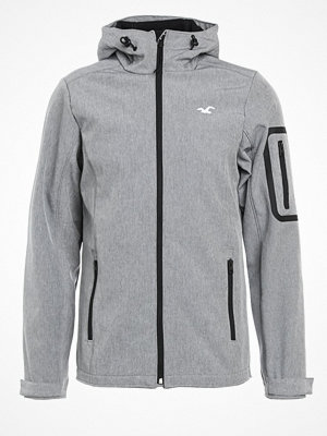 Jackor - Hollister Co. Outdoorjacka grey