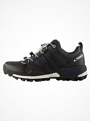 Sport & träningsskor - Adidas Performance TERREX SKYCHASER  Löparskor terräng dark grey/core black/footwear white