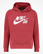 Tröjor & cardigans - Nike Sb Sweatshirt cedar/white