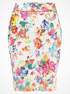 Kjolar - Anna Field Pennkjol multicolor