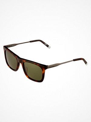 Solglasögon - Calvin Klein Solglasögon shiny tortoise