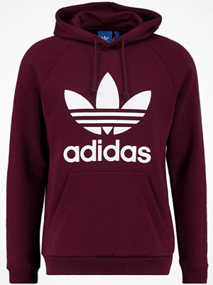 Adidas Originals TREFOIL  Luvtröja maroon