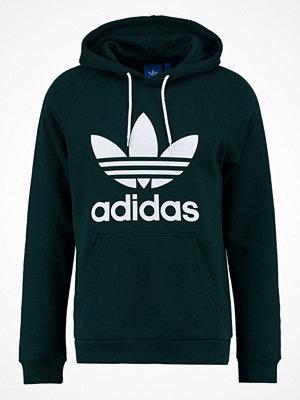 Adidas Originals TREFOIL  Luvtröja green night