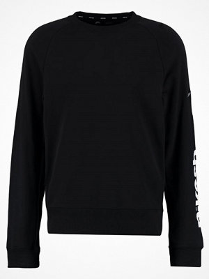 Nike Sb EVERETT ENERGY Sweatshirt black/dark grey