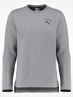 Puma EVO CORE Sweatshirt medium gray heather