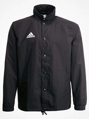 Regnkläder - Adidas Performance TANGO COACH  Teamwear black
