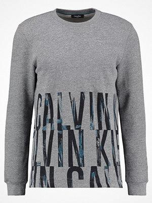 Calvin Klein KALO FRENCH Sweatshirt mid grey heather