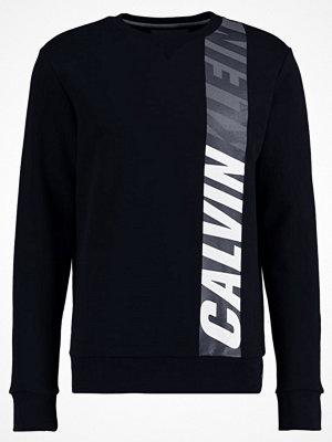 Tröjor & cardigans - Calvin Klein Jeans HACTIVE Sweatshirt black