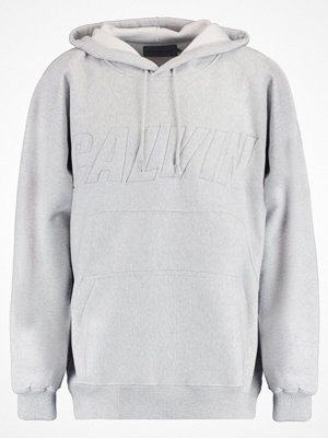 Tröjor & cardigans - Calvin Klein Jeans HARACK Luvtröja light grey heather