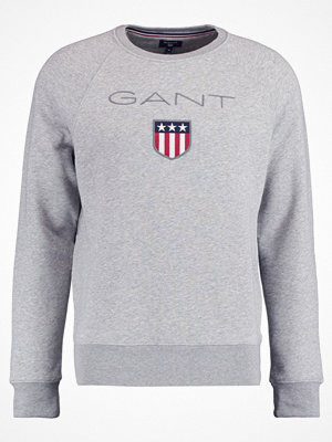 Gant SHIELD CREW NECK  Sweatshirt grey melange