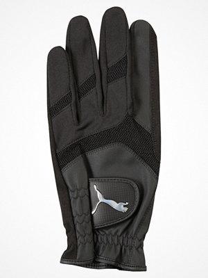 Handskar & vantar - Puma Golf STORM PERFORMANCE Fingervantar puma black
