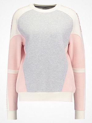 Calvin Klein Jeans HANI Sweatshirt light grey