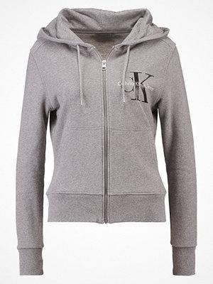 Street & luvtröjor - Calvin Klein Jeans HALI TRUE ICON ZIP THRU Luvtröja light grey heather