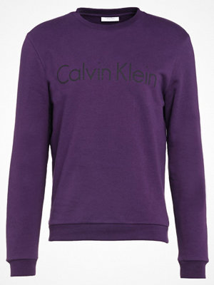 Calvin Klein SEM LOGO CREW NECK Sweatshirt concord