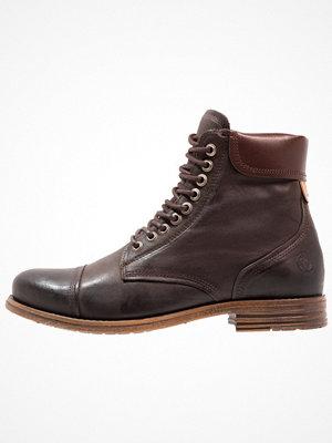 Boots & kängor - Sneaky Steve DOVERLAKE Snörstövletter dark brown