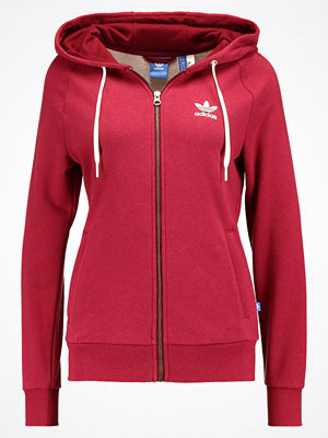 Adidas Originals Sweatshirt cobume