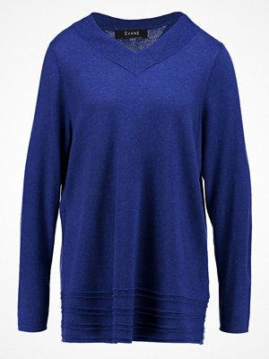 Evans LONG SLEEVE V NECK PARIS  Stickad tröja blue