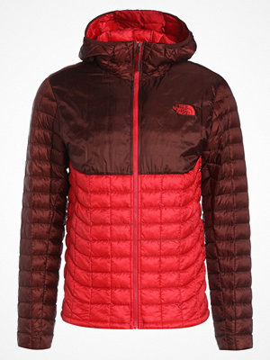 Regnkläder - The North Face THERMOBALL  Outdoorjacka bordeaux/red