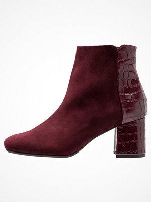 Boots & kängor - Peter Kaiser TOSSA Ankelboots cabernet cocco