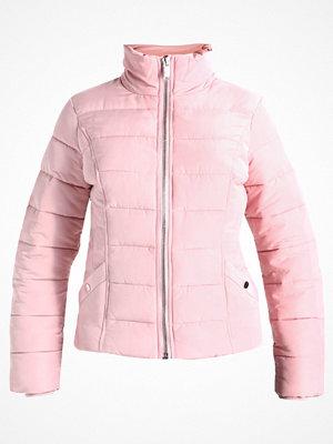 Miss Selfridge PUFFER    Vinterjacka pink