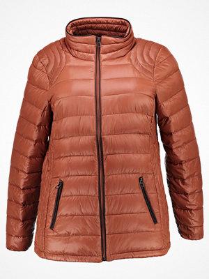 Zizzi Dunjacka copper brown